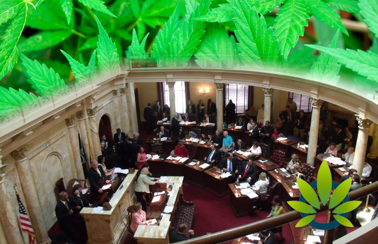 US Senate by New Jersey Senator to Offer Business Insurance Plans to State-Legal Cannabis Companies