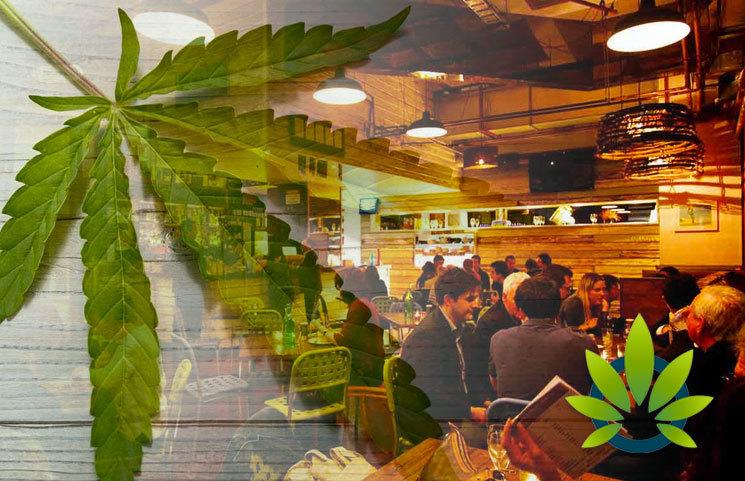 West Coast Venture Group (WCVC) Launches CBD Restaurant, Illegal Burger, and Sees Success
