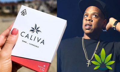 Caliva Cannabis Company Welcomes Billionaire Musician Jay-Z as New Partner