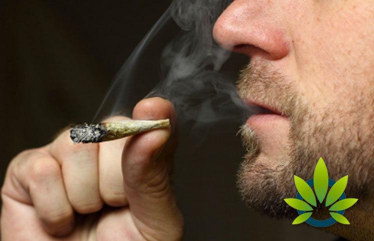 New Duke Medical Center Study Draws Alarming Genetic Linkages to Men's Marijuana Use