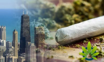 A-Village-in-Chicago-May-Ban-Use-of-Recreational-Marijuana-for-A-Minimum-of-One-Year