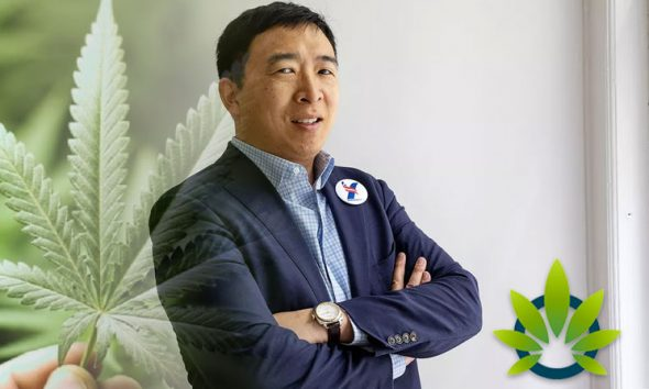 2020 Presidential Candidate Andrew Yang Promotes Campaign with Marijuana-Centric Apparel