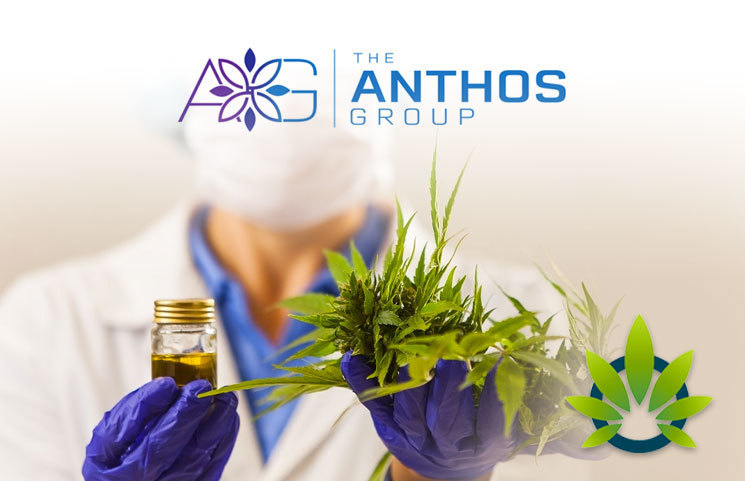 Apex Biosciences and Slyngshot Health Become The Anthos Group, Fighting to Bring Quality CBD to Patients