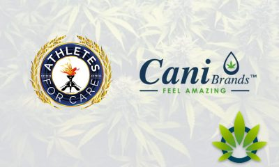 Athletes for CARE (A4C) and CaniBrands to Advocate for CBD in Sports Nutrition