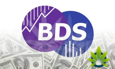 BDS-Analytics-Cannabis-Market-Intelligence-and-Research-Firm-Secures-7-Million-in-Capital-Funds