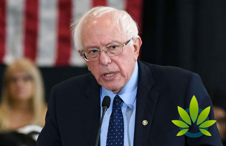 Bernie Sanders Goes on Joe Rogan Podcast to Say Cannabis is The Only Drug to Decriminalize