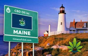 is thc oil legal in maine