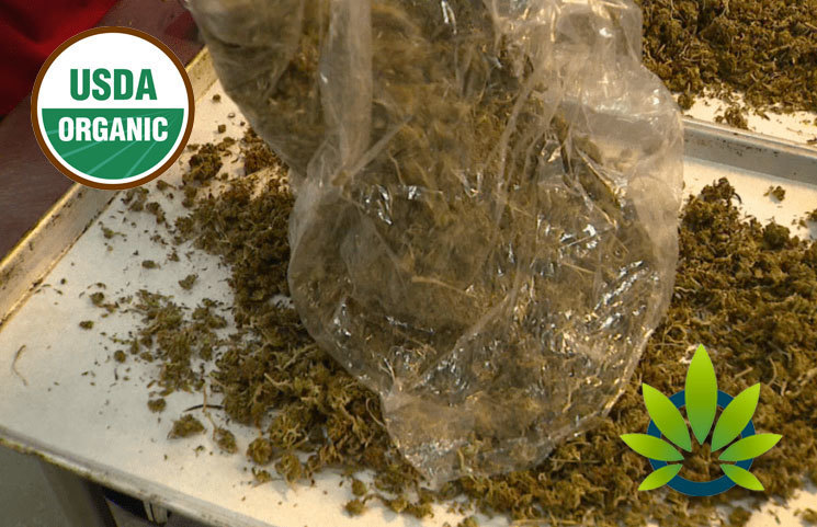 Sunsoil CBD Oil Maker Aims to Up its USDA-Certified Organic Hemp Production to 100,000 Kilos in 2020