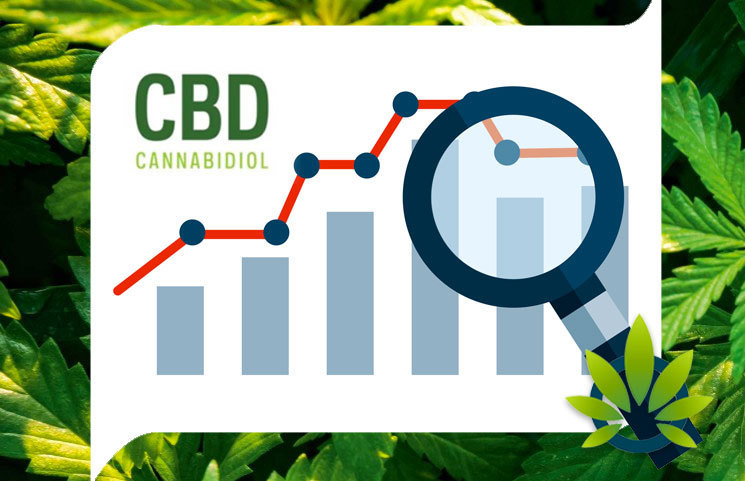 CBD Search Interest is Booming, Becomes More Popular than Kim Kardashian, Beyoncé and Veganism