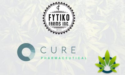 CURE Pharmaceutical Attains Access to High Quality Hemp CBD Since Partnering with Fytiko Farms