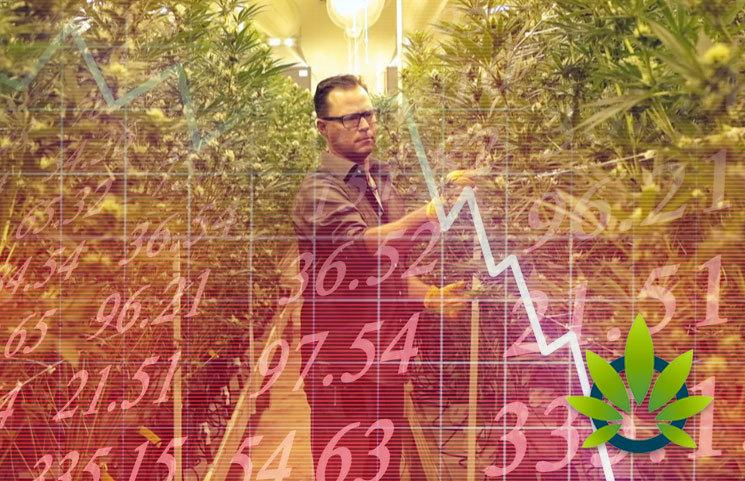 California-Faces-Market-Drop-in-Number-of-Active-Marijuana-Business-Licenses-in-2019