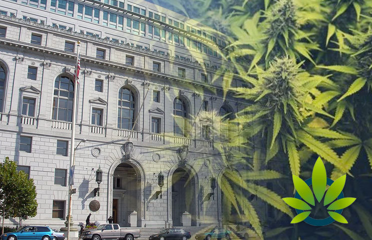California Supreme Court Ruling on San Diego Cannabis Law Gives Businesses Uncertain Analysis