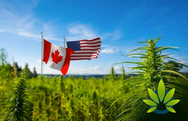 Canadian Cannabis Giant Cronos Group Sees Biggest Sales Potential in the US CBD Market