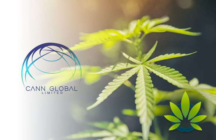 Cann Global Becomes First Hemp Product Supplier to Costco of VitaHemp Brand