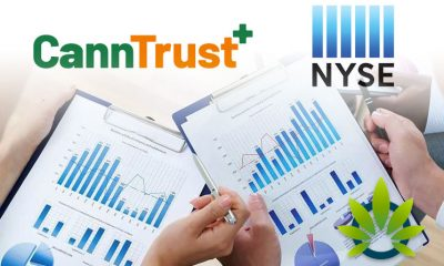 CannTrust Risks Losing Half of its Inventory Worth Over $50 Million and NYSE De-listing