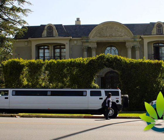 California Cannabis Party Bus Bill Advances in Legislation Acceptance, Awaits Full Assembly Vote