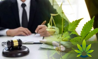 Jefferson County, Kentucky to No Longer Prosecute Cannabis Possession Crimes of Low-Level Nature