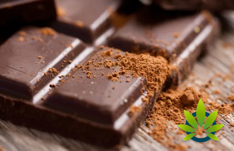Cannabis Researchers Try to Evaluable Potency of Edibles, But Chocolate Impedes Testing Progress
