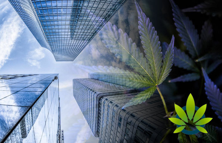 Cannabis and Industrial Hemp Industry Group Formed by Brownstein