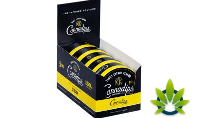 Cannadips CBD: Natural Pouch-to-Mouth Hemp CBD with No Tobacco