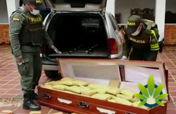 Colombian Police Seize 300kg of Cannabis Found in Coffins as Hawaii Hemp Crop Gets Destroyed