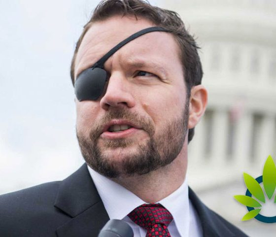 Congressman Dan Crenshaw Supports Legal Cannabis Federally, Despite Not Voting For It