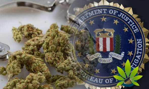 Corrupt-Public-Officials-Lead-FBI-To-Crack-Down-on-Marijuana-Industry