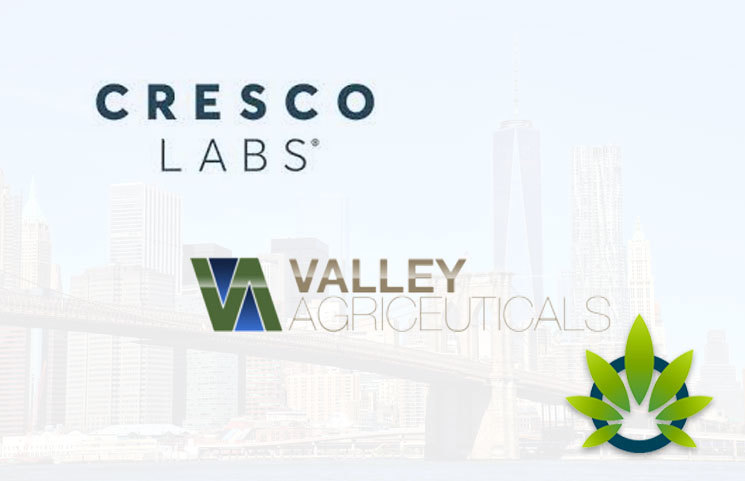 Cresco Labs Acquires Valley Agriceuticals Through Regulatory Approval