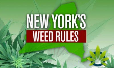 Decriminalization of Marijuana in New York Via New State Law Starts Today