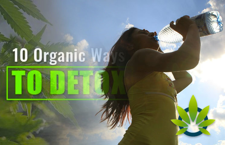 Marijuana Body Detox: 10 Fast Ways to Flush Weed Out Organically