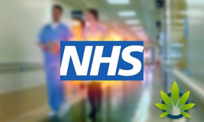 Difficulties with National Health Service in UK Leads Patients to Private Clinics for Cannabis Medication