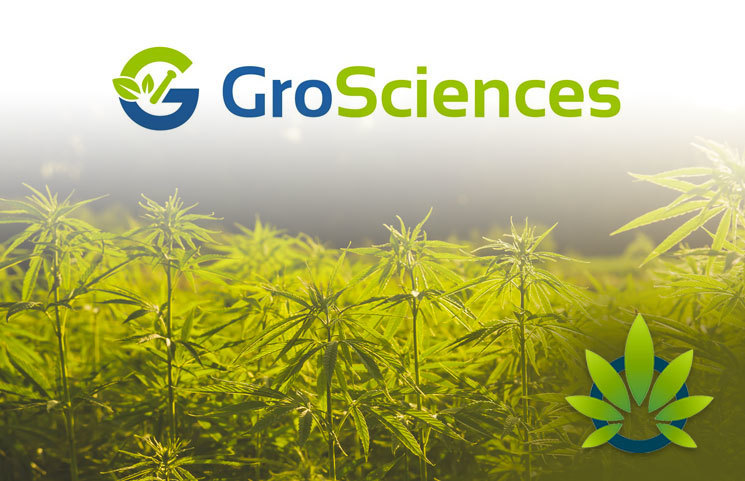Digipaths-GroSciences-Moves-Further-With-Testing-For-Its-Patent-Pending-Plant-Derived-Pesticide