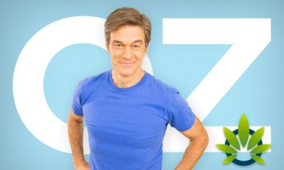 Dr. Oz Trusts CBD Could Work, But Shares Concerns on Unsatisfactory Cannabidiol Products