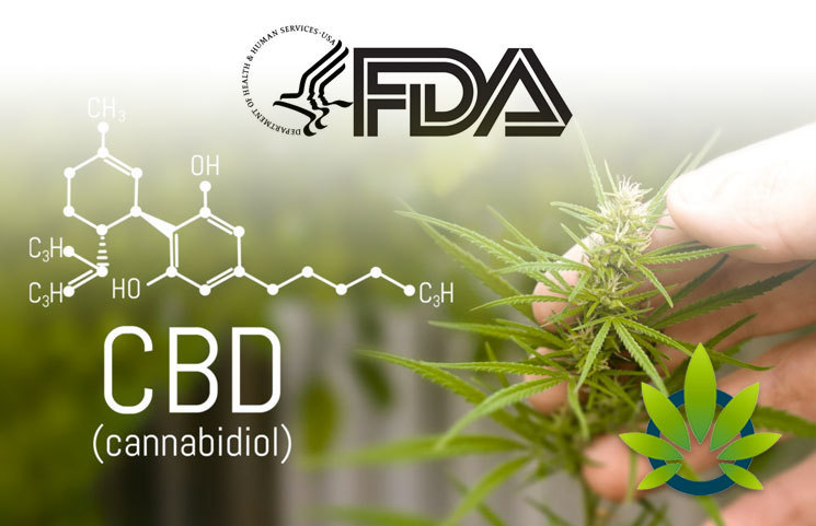 FDA Official Discusses the Need for More CBD Research to Collect Better Cannabidiol Data