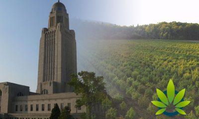 Farm Equipment Dealer Sues Nebraska over Hemp Growing License Rejection