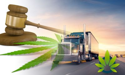 Federal Court Consulted Over Confusion About Hemp Transportation Laws