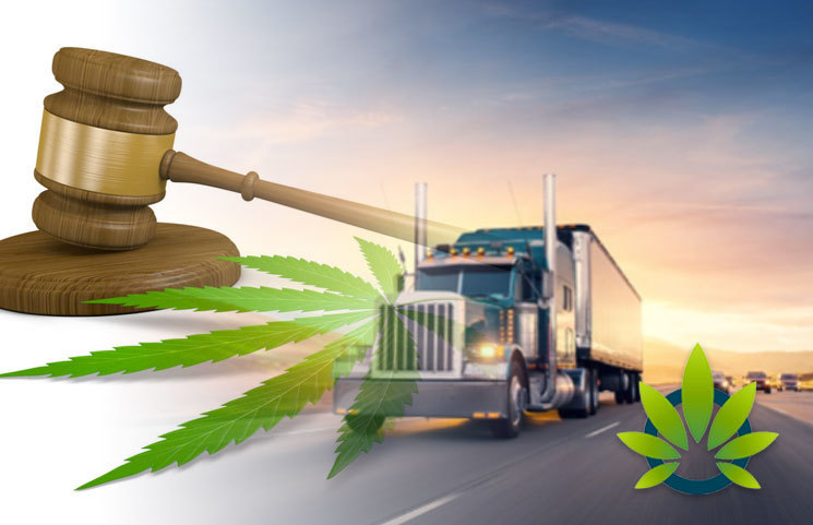 Federal Court Consulted Over Confusion About Hemp