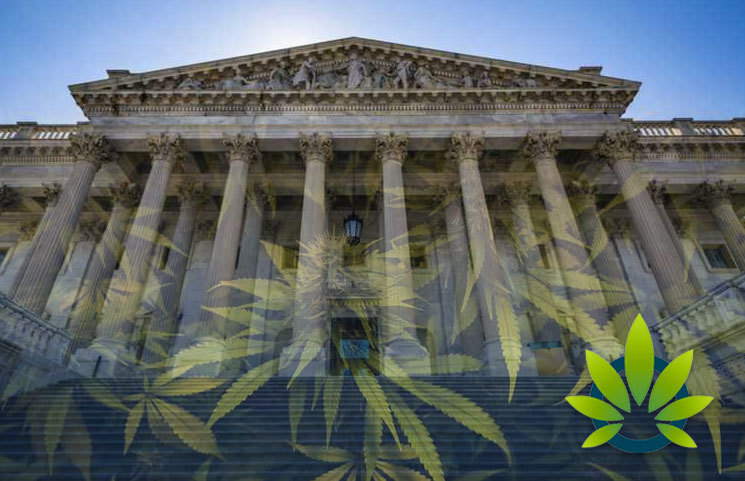 Federal Regulators Won't Discipline Credit Unions from Marijuana Business Involvement
