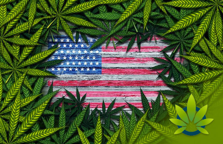 Cannabis Industry's Fate May Lie in the Hands of the 2020 US Presidential Election