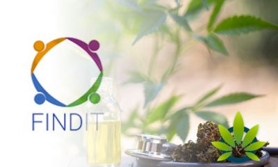 Findit Announces Reception of Second Topical CBD Purchase Order from Urban Collective
