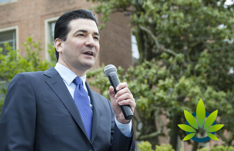 Former FDA Head Scott Gottlieb on Marijuana Legalization and Viable Reasons to Decriminalize