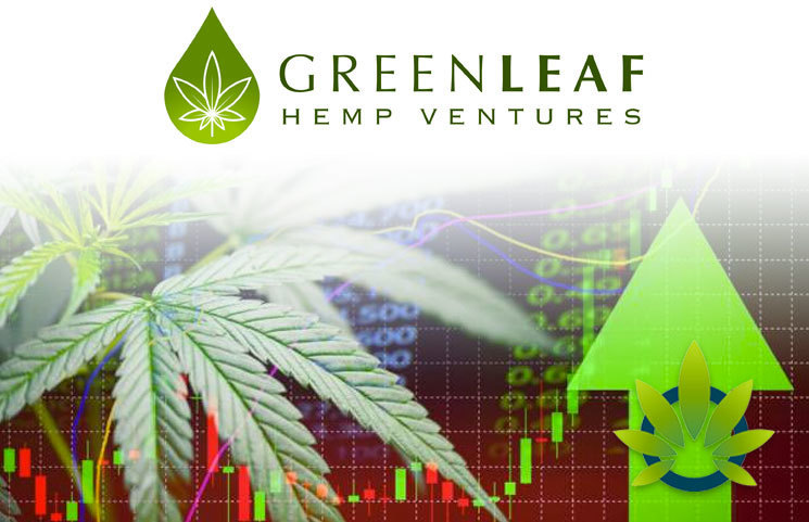 Green Leaf Hemp Ventures Debuts New Investment Fund to Boost Cannabis Industry Growth Opportunities