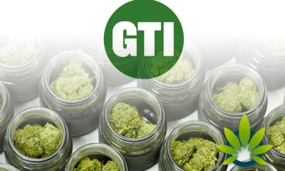 Green Thumb Industries Owns First Five Adult-Use Marijuana Dispensary Licenses in Illinois