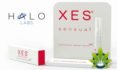 "Halo to Launch ""XES Sensual"", a CBD-Based Sexual Wellness Product System"