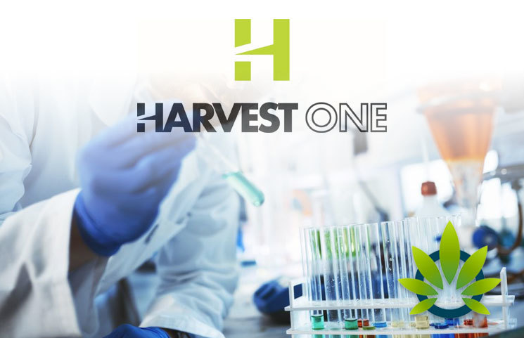Harvest One's Satipharm Phase 2 Clinical Trials of CBD Gelpell Shows Positive Epilepsy Results