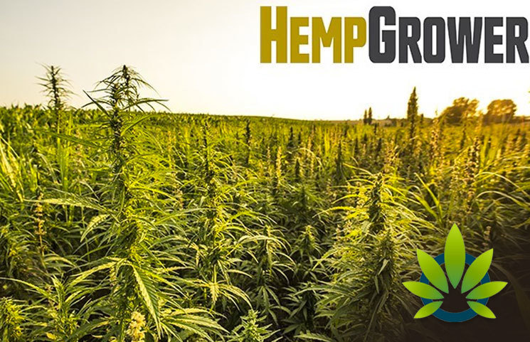 New Hemp Grower Website and Weekly Newsletter Set to Launch This Month by GIE Media