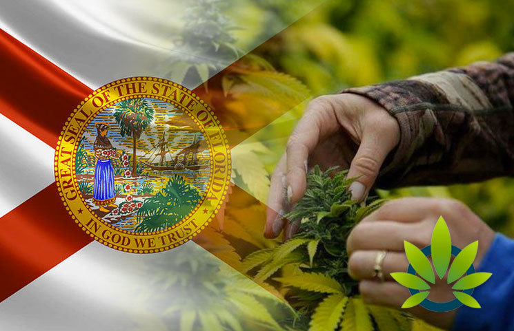 Hemp-Workshop-in-Florida-Seeks-to-Get-Clarity-on-the-Hazy-Hemp-and-CBD-Laws