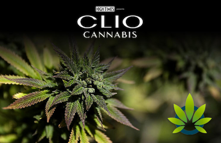 High-Times-Partners-With-Clio-to-Launch-Cannabis-Marketing-Awards