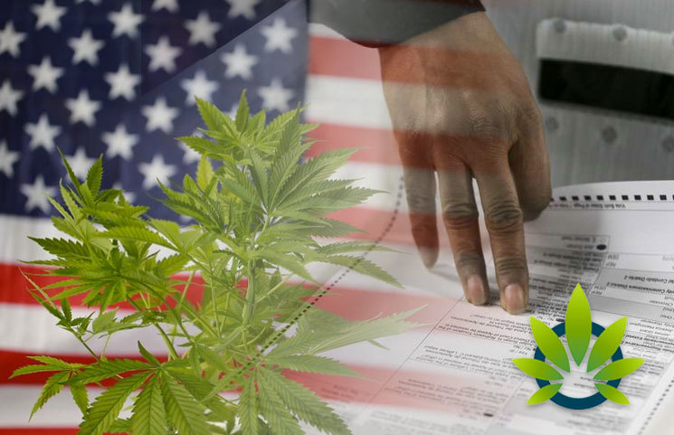 List of What Legal Marijuana Advocates Want to Know from Presidential Candidates?
