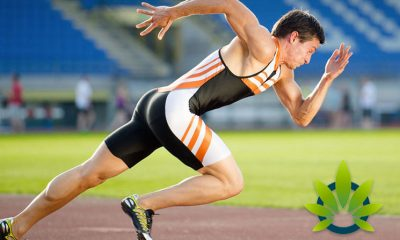 Impact-of-Cannabis-on-Athletes-Examined-by-Colorado-Based-Researchers